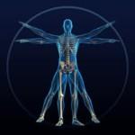 How to Build Bone Health Naturally Webinar